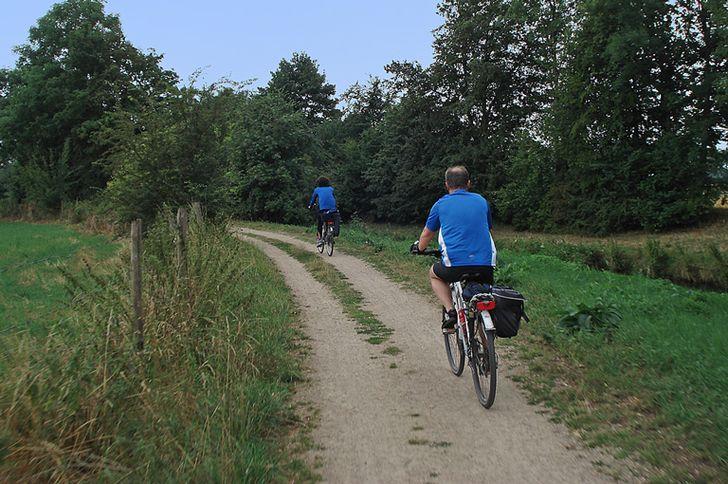 Nimstal-Radweg – auf Bahntrassen bei Bitburg