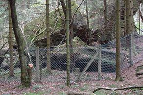 Schneifel-Wanderung – gesprengte Bunker aus dem Zweiten Weltkrieg säumen den Weg
