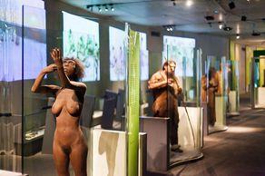 Neanderthal Museum – Blick in die Dauerausstellung © Foto Neanderthal Museum