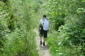 Auf einsamen Waldwegen in den Ardennen unterwegsAuf einsamen Waldwegen in den Ardennen unterwegs