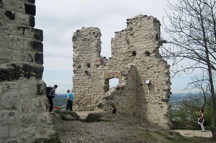 Drachenfels – die alte Burgruine hoch über Königswinter