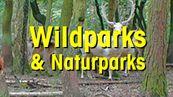 Damwild mit Text Natur- und Wildparks
