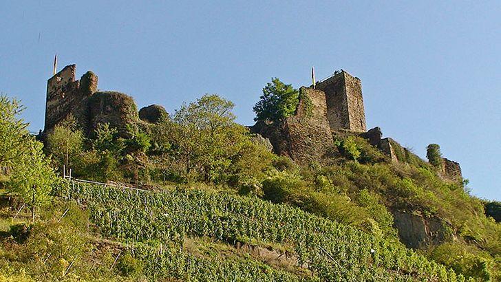 Die Burg Metternich bei Beilstein an der Mosel bietet eine herrlischen Blick ins Moseltal