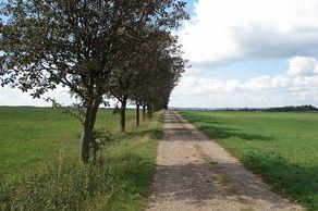 Auf dem Jakobsweg zurück nach Nettersheim