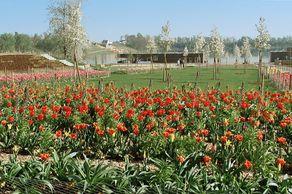 Landesgartenschau Zülpich – jetzt ein Gartenschaupark