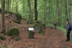 Römischer Steinbruch bei Wassenach