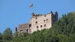 Ansicht der Burg Hohengeroldseck von Süden