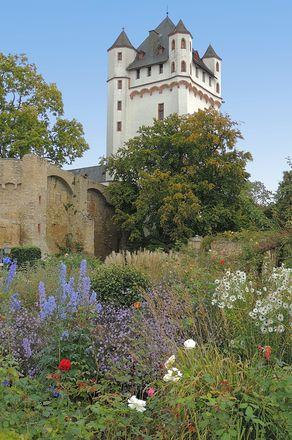 Eltville – der stadtbildprägende weiße Turm der Kurfürstlichen Burg