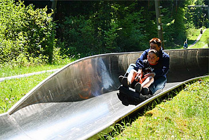Sommerrodelbahn Daun am Wildpark – Foto © Wildpark Daun