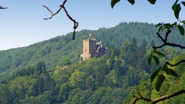 Burg Aras auf dem 200 Meter bewaldeten Bergkegel bei Alf