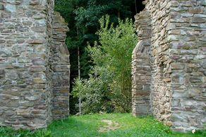 Burg Neublankenheim– Durchgang mit Mauerresten