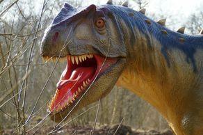 Dinosaurierpark Teufelsschlucht – Allosaurus © Foto Winfried Hoor
