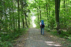 Wandern in den Ardennen im Norden Luxemburgs