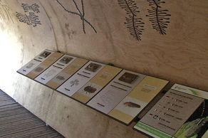 Nationalpark Eifel – Wilder Weg – Station mit Erklärungen über Käfer