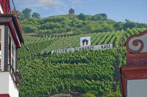 """Die """"Schwarze Katz"""" – Weinlage in Zell oberhalb des Ortes"""