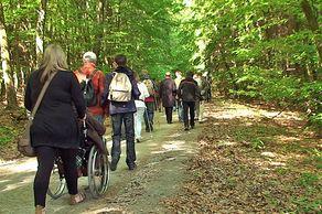 Barrierefrei mit dem Rollstuhl im Nationalpark Eifel unterwegs
