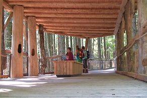 Nationalpark Eifel – Wilder Weg – Station auf dem überdachten Holzsteg