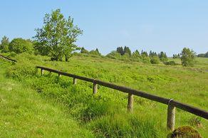 Naturpark Hohes Venn Eifel – Landschaft im Schutzgebiet