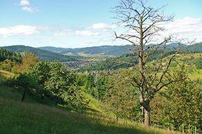 Hahn-und-Henne-Runde – Blick auf Unterharmersbach